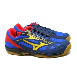 MIZUNO CYCLONE SPEED 2 – SURF THE WEB/GOLD